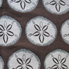 Fabic has a cream sand dollar pattern on a chocolate brown background.